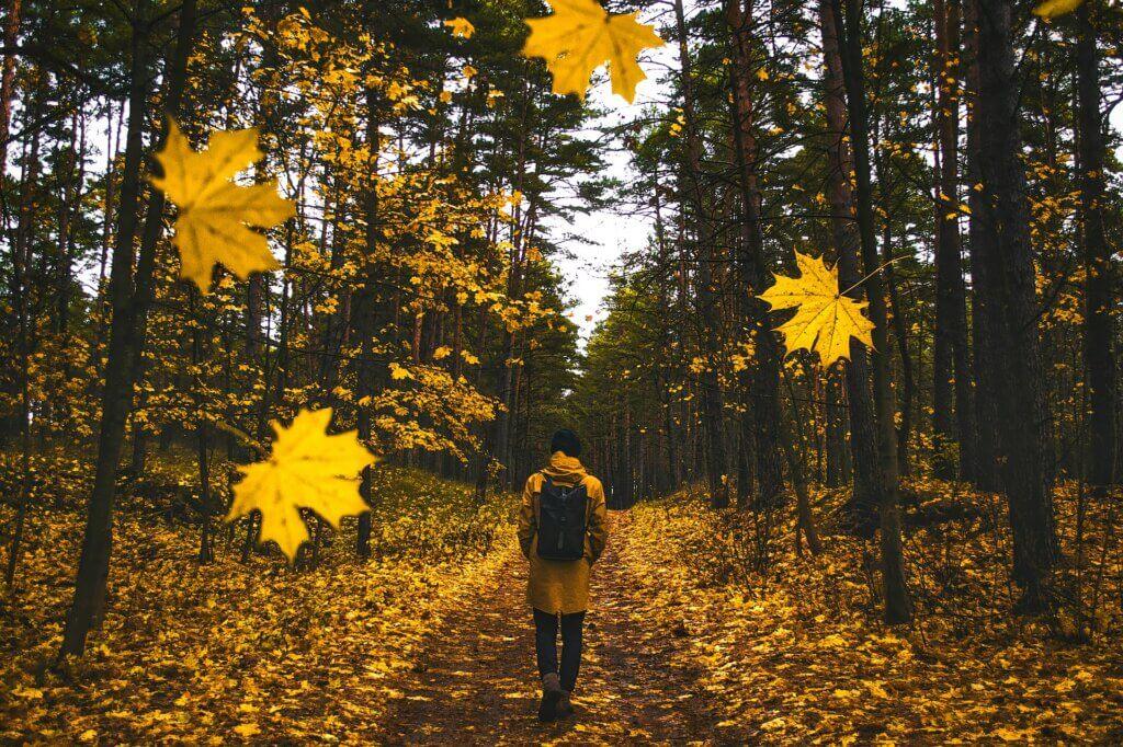 following in Jesus' steps